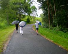 Photo of 3 people walking on road with umbrellas